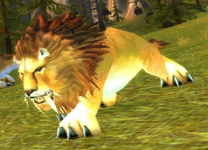 The best ten pets of WOW Classic Hunter, pay tribute to the
